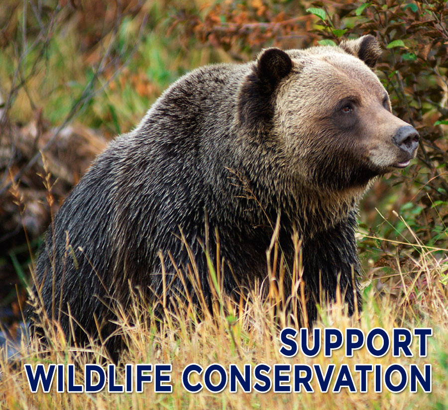Help Support our Conservation Efforts