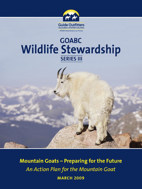 Wildlife Stewardship 3 - Mountain Goat