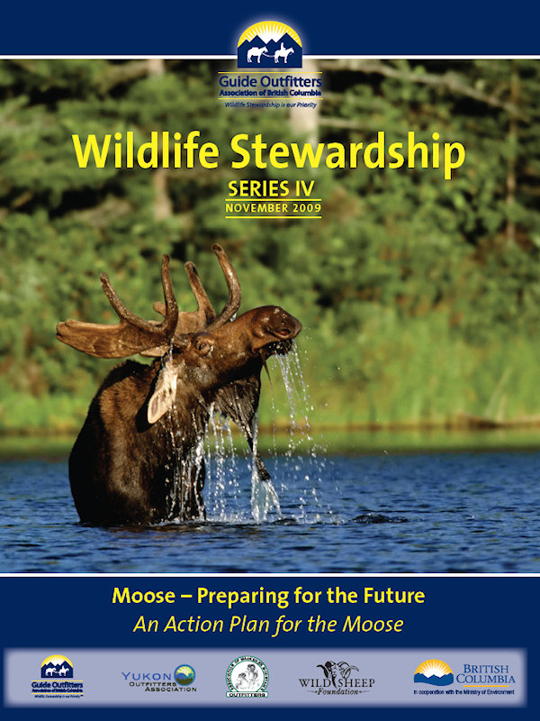 Wildlife Stewardship 4 - Moose