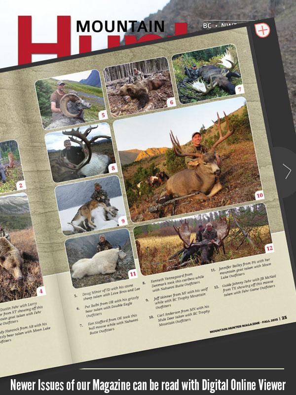 Digital Online Viewer for Magazine