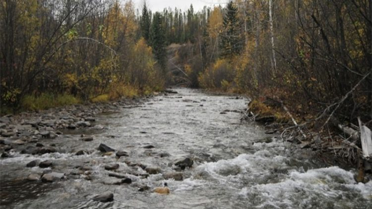 Liard River Outfitters