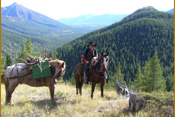 Packhorse Creek Outfitters